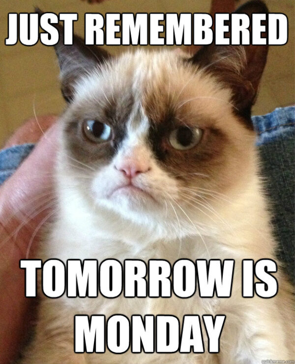 grumpycat monday
