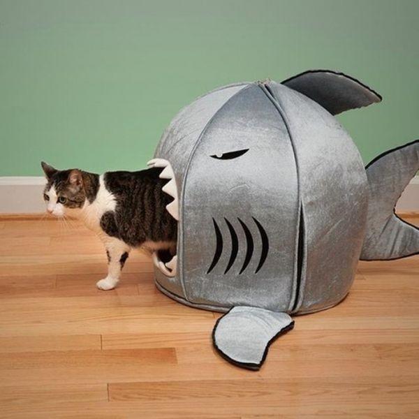 Crazy-cat-furniture7